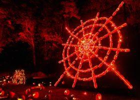11/11  约你看最大型南瓜灯展 自驾游或者巴士团